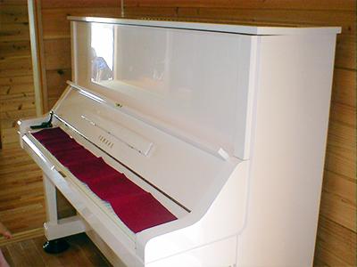 パールホワイトラメ入り塗装(横から)